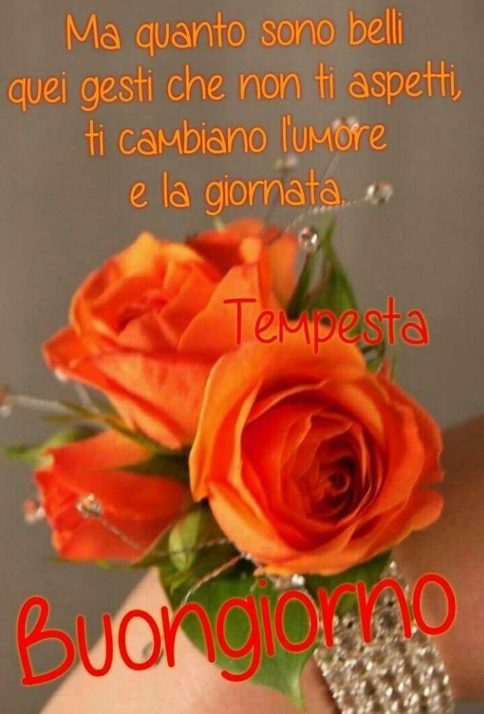 Popolare 1387 best Buongiorno images on Pinterest   Vignettes, Bonjour and  NA16