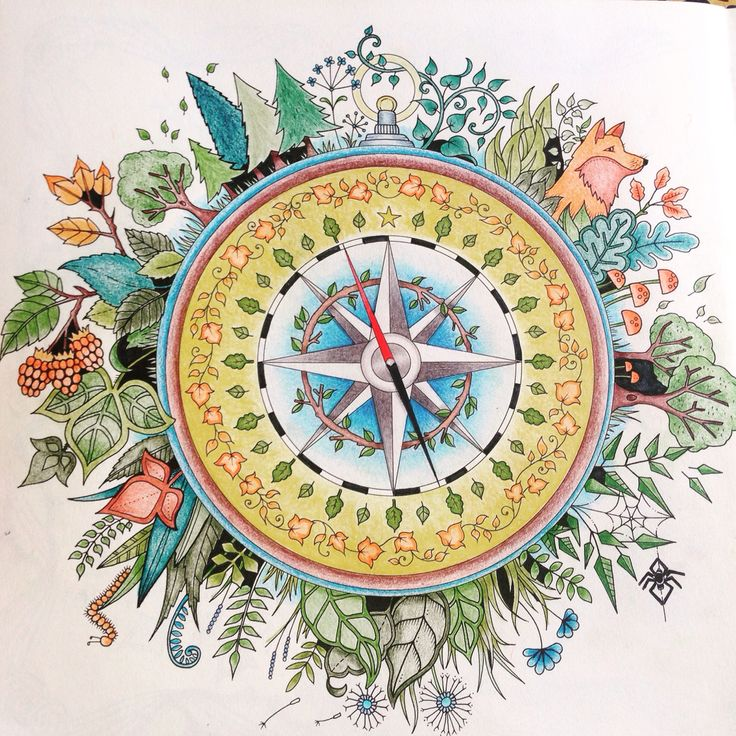 Enchanted Forest Coloring Book Florest Compass