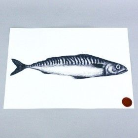 mackerel-print-cream-cornwall-maritime