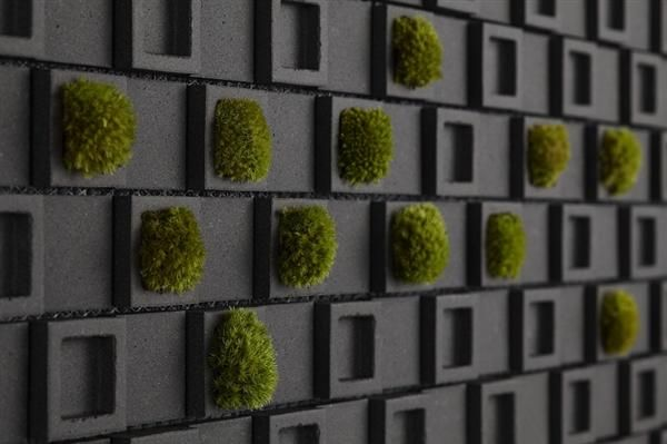 Permanent Link to : Athmospheric Tile with Moss of Dent Cube Wall Tile by Teruo Yasuda