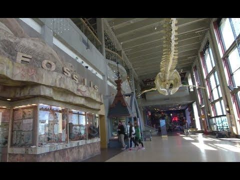 Inside a place-based school: The idea behind place-based schools is to immerse students in daily learning by locating the school inside an inspiring learning environment. The Grand Rapids Public Museum School, a middle school in Grand Rapids, MI, is on the top floor of the local museum that focuses on history, science, and culture. See how students explore the museum as they work on class projects.