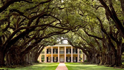 Everything you ever wanted to know about the plantations near New Orleans and then some
