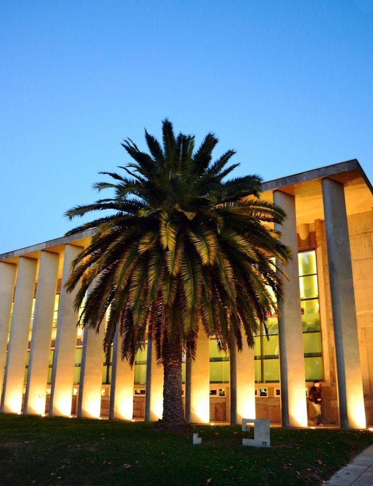 Gallery - U. Talca Library / Valle Cornejo Arquitectos - 2