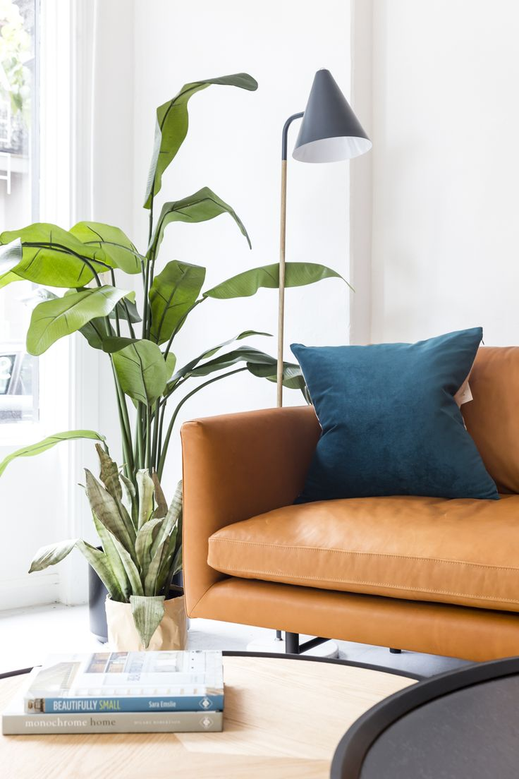 Soft tan leather Louis sofa, with black floor lamp and indoor plant.
