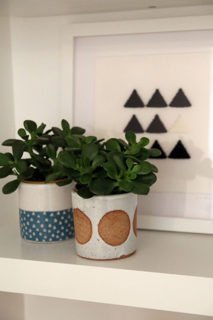 ceramic or pottery planters