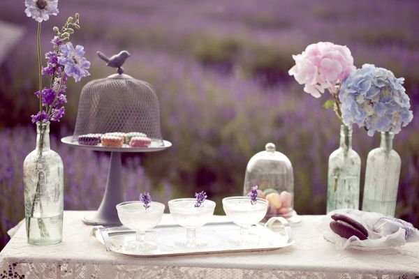 this wedding is not only gorgeous but in fields of lavender... so probably smelled good too!