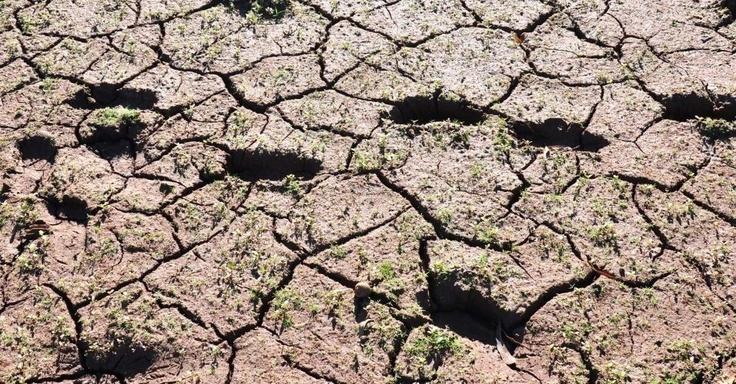 Falta de chuva no Rio Grande do Sul causa prejuízos às lavouras no Estado. Na região de Passo Fundo o nível de água na Barragem de Ernestina baixou