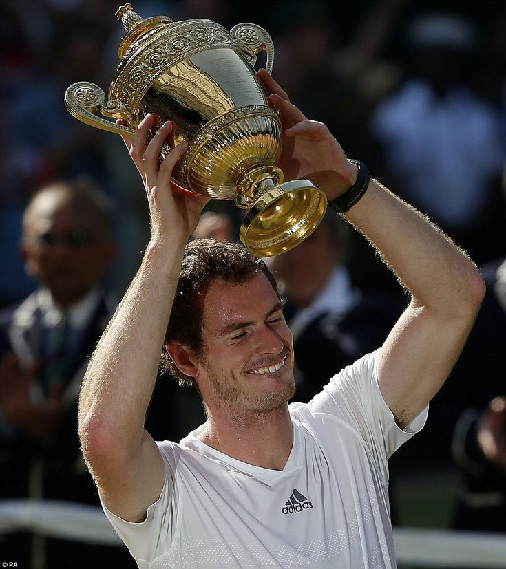 did andy murray win at wimbledon today