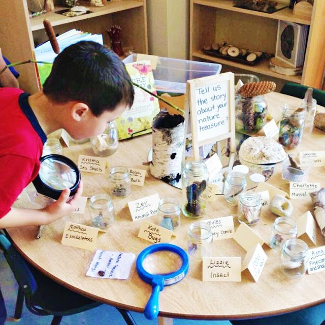 Inquiry table-invite students to bring in a treasure from nature to start your year of discovery.