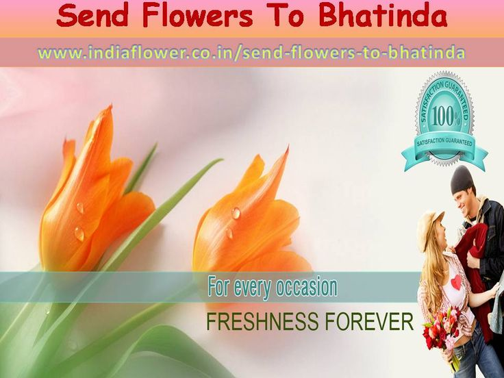 Send flowers to Bhatinda through india flower in same day fast delivery we have delivery fresh flowers anywhere in Bhatinda and all over india in events such as birthday party wedding anniversaries and more. So Dont waste your time and book now fresh flowers and more products for events 24 hours delivery support. Send flowers to Bhatinda and all over india Get More Informaion See My website  http://www.indiaflower.co.in/send-flowers-to-bhatinda