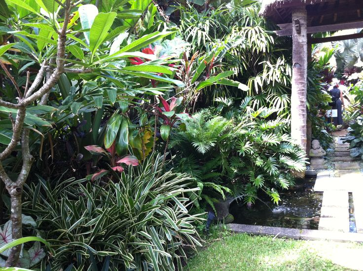 tropical gardens small gardens balinese garden florida gardening plant design beautiful gardens backyard ideas garden ideas tropical paradise - Garden Ideas Tropical