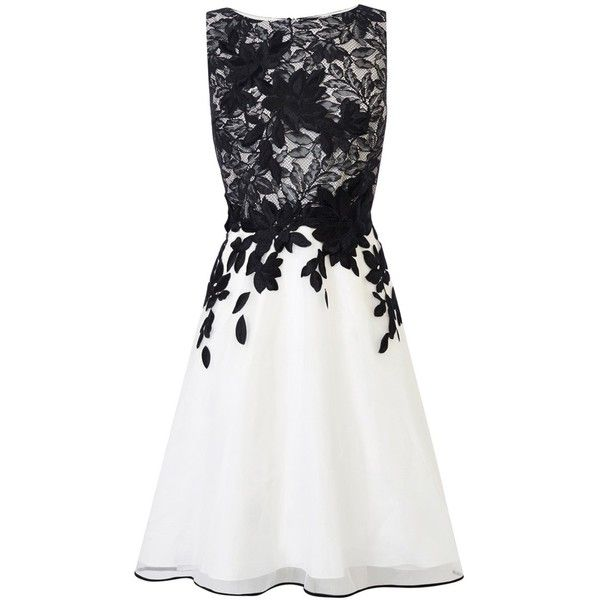 Coast Anabelle Artwork Dress, Black/White found on Polyvore featuring dresses, vestidos, sleeveless maxi dress, black and white cocktail dress, lace overlay dress, lace sleeve dress and knee length cocktail dresses