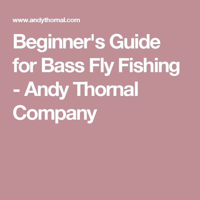 Beginner's Guide for Bass Fly Fishing - Andy Thornal Company