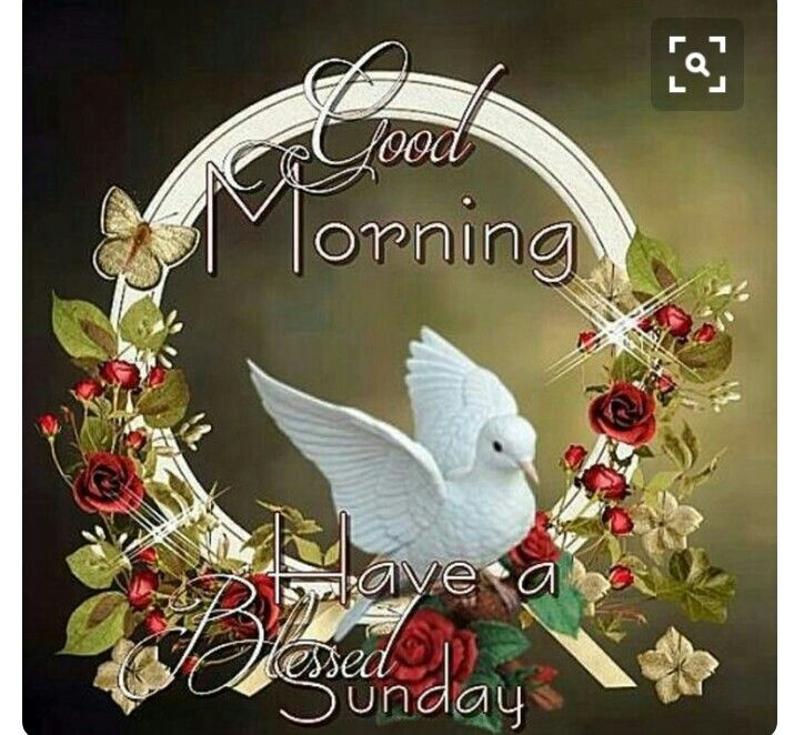 Good Morning Sweet Friends Have A Blessed Sunday Good Morning