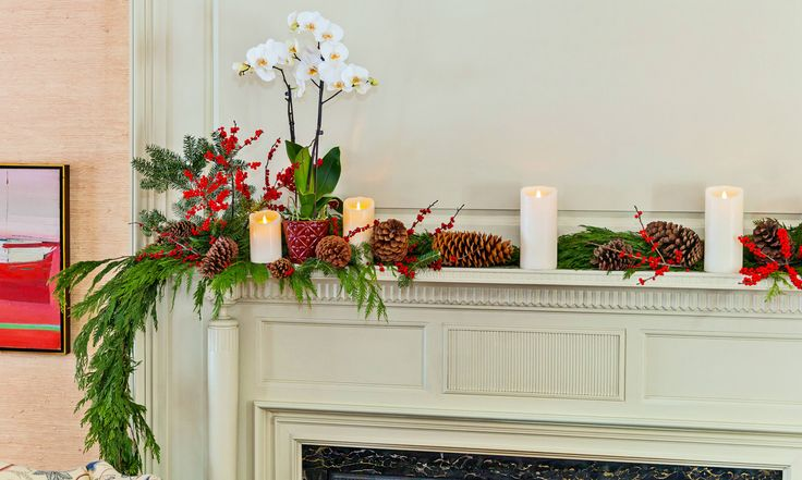 How can you make sure you get exactly what you pay for with your holiday orchid delivery? Follow these five simple tips.