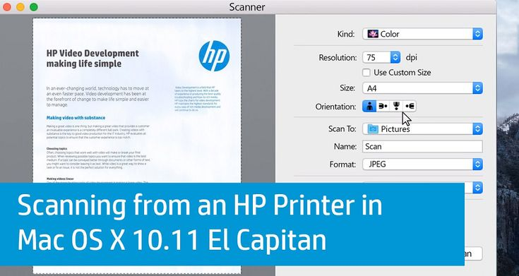Pin by Sarah Sea on hp printer offline number 8448027535   Video development. Printer. Hp printer