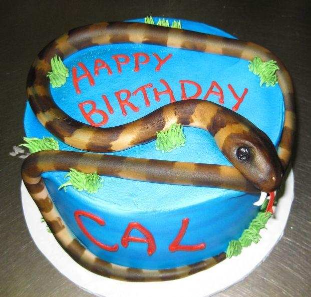 21 best snake cake ideas images on pinterest snake cakes