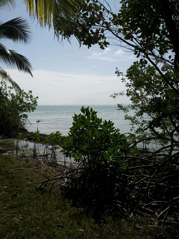 Corozal Bay - Belize