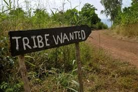 tribewanted 2