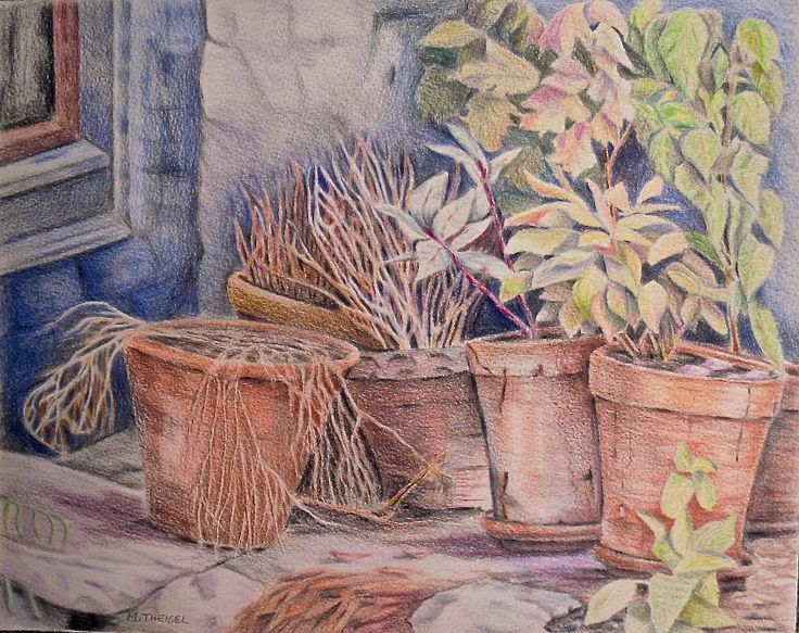 Art work. Pot plants, as part of the foundation work on coloured pencils with ArtTutor. Coloured pencil work, done using Derwent No 19. Artwork done by Marilyn Theisel