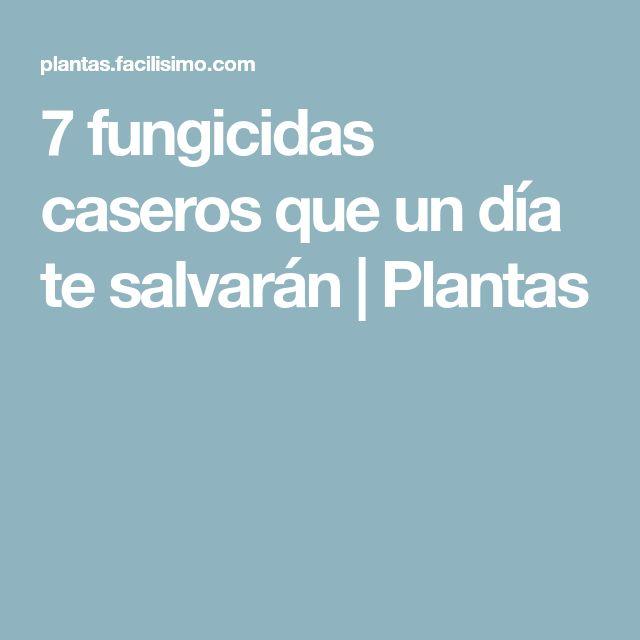 7 fungicidas caseros que un día te salvarán | Plantas