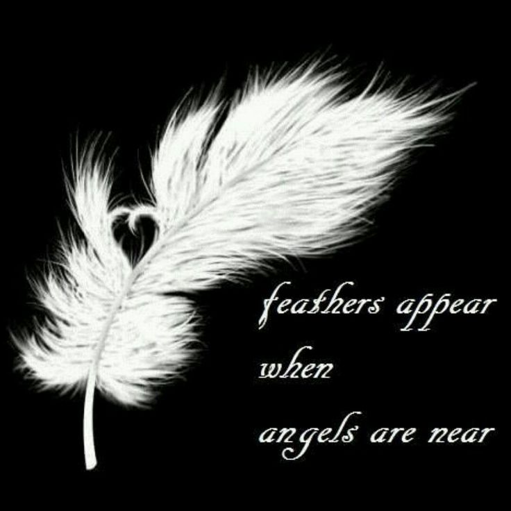 These are one of a kind Feathers, called Dream Feathers, they work just like dream catchers. These make a great gift!