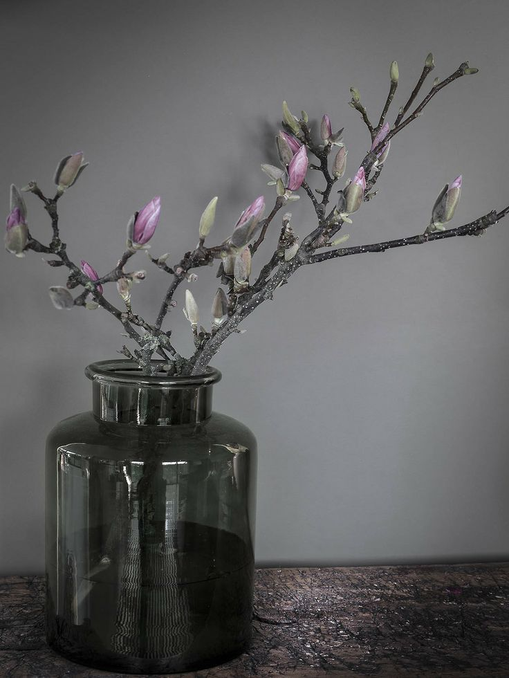De Peppels Photo Blog • Posts Tagged 'interiors' Magnolia blossom