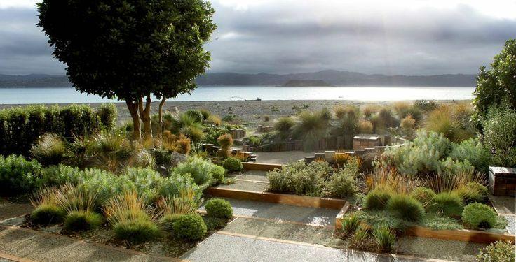 17 best images about nz coastal garden ideas on pinterest