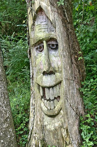 Orr Park Tree. Orr Park features many carvings by local artist Tim Tingle. Dragons, old men, and various creatures are carved into the trees around the walking trail.