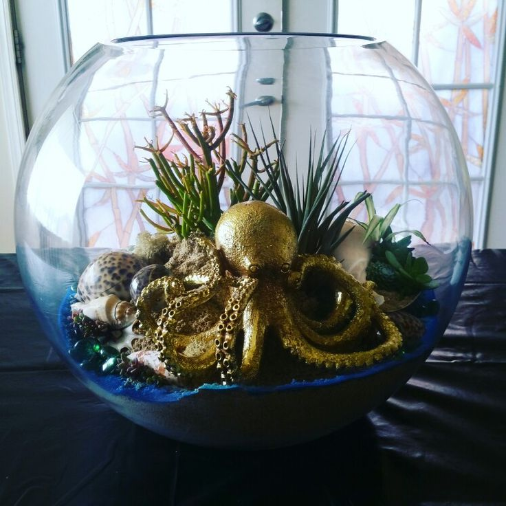 Ocean terrarium on point.  Did you know we rent these out?  Yes!  We are excited…