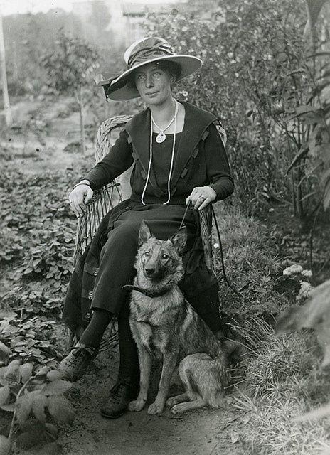 Lady com seu cão