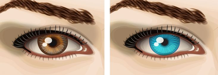Eyes in Adobe Illustrator by Kerstin Petersson