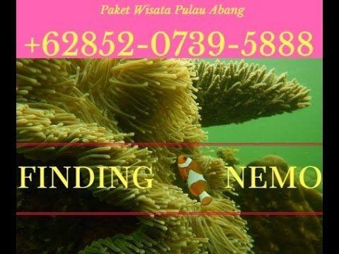 paket wisata pulau abang batam 085207395888