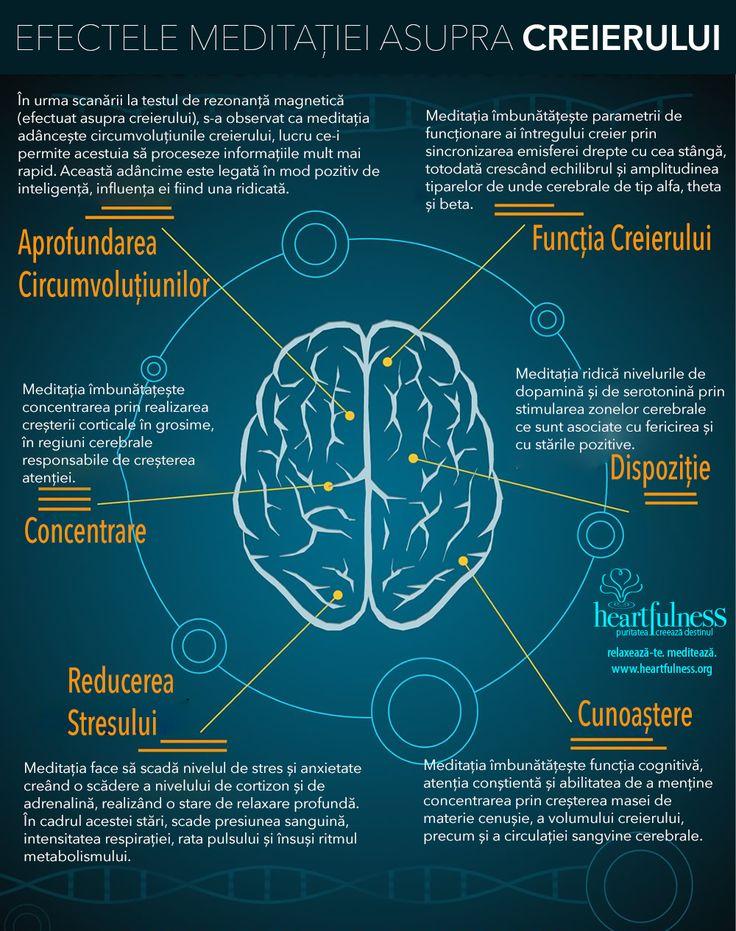 EFECTELE MEDITAȚIEI ASUPRA CREIERULUI ❤ Aprofundarea Circumvoluțiunilor În urma scanării la testul de rezonanță magnetică (efectuat asupra creierului), s-a observat ca meditația adâncește circumvoluțiunile creierului, lucru ce-i permite acestuia să proceseze informațiile mult mai rapid. Această adâncime este legată în mod pozitiv de inteligență, influența ei fiind una ridicată. ❤ Funcția Creierului Meditația îmbunătățește parametrii de funcționare ai întregului creier prin sincronizarea...