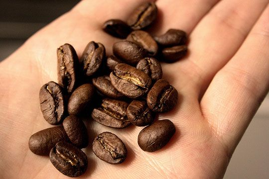Coffee beans get smell of garlic, onions, or fish off your hands! Good in refrigerator too.