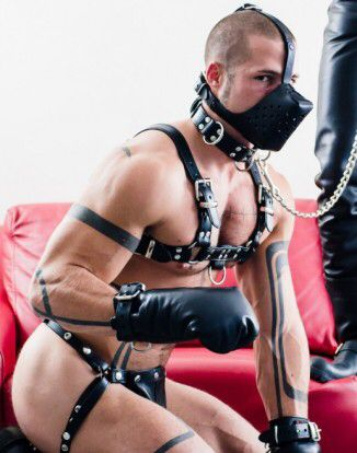 from Zion gay eroticca home for a pup