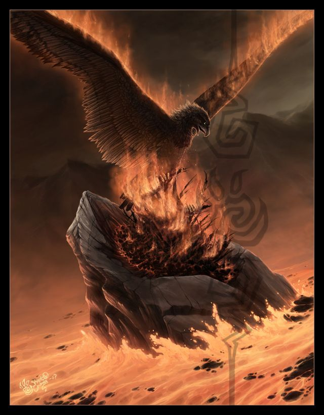 One of the more original Phoenix illustrations I have seen in a while.