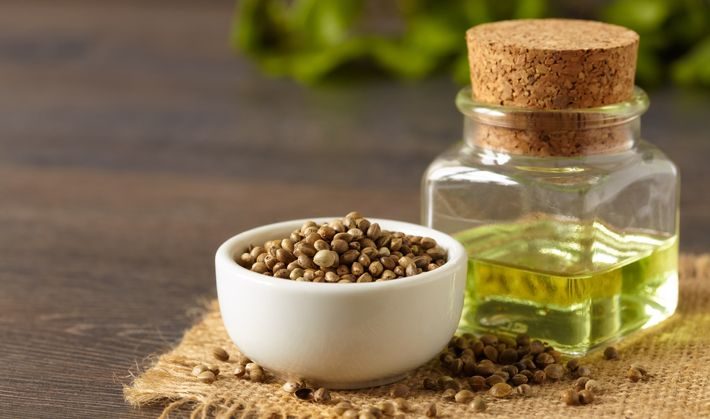Hennepolie oftewel hennepzaadolie is een plantaardige olie die wordt verkregen uit de zaden van bepaalde hennepplanten. Hennepzaad staat te boek als 'superfood' vanwege de hoge concentratie aminozuren en de optimale verhouding qua essentiële vetzuren. Hierbij alles wat je moet weten