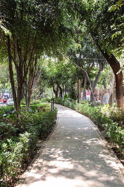 Avenida Amsterdam, Mexico City