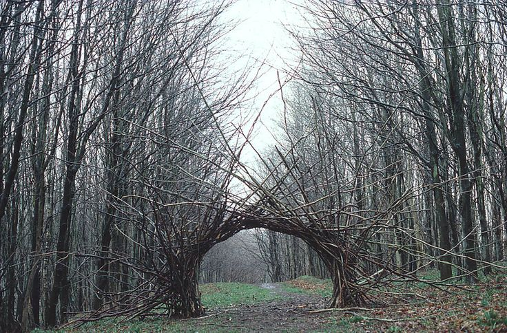Andy Goldsworthy (Brit., born 1956), Woven branch arch, Langholm, Dumfriesshire, April 1986