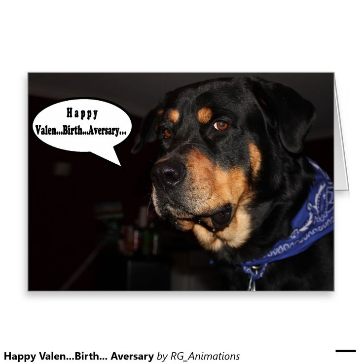 Happy Valen...Birth... Aversary Greeting Card