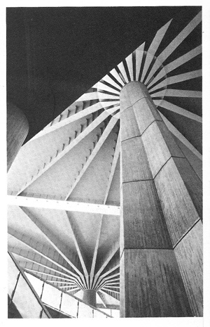 Detail:  Pier Luigi Nervi