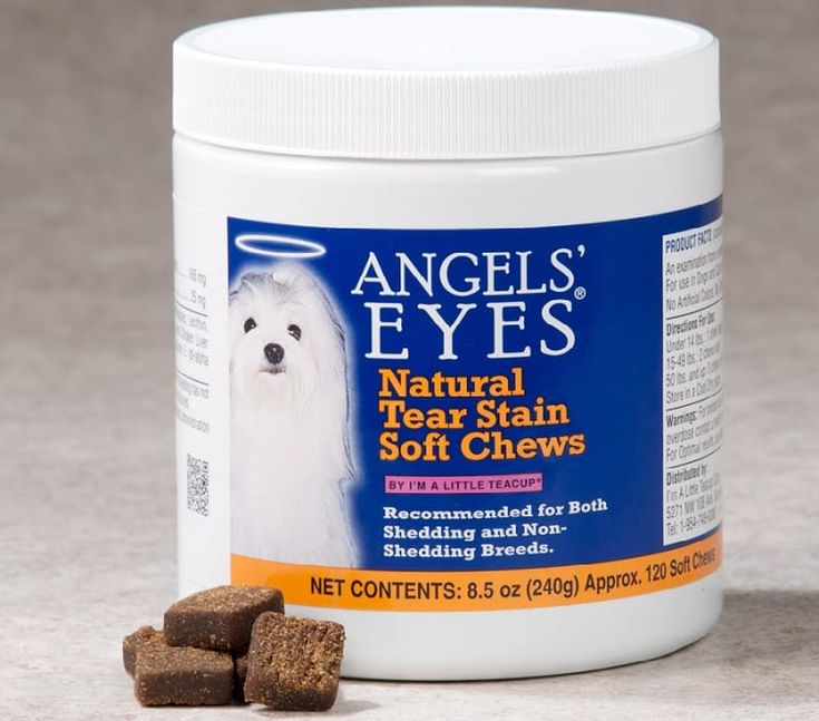 Dog Tear Stains: How to Keep Your Dog\u2019s Eyes Clean   Tear ...