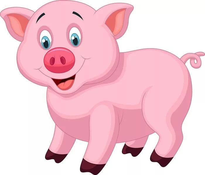 Картинки по запросу картинки для детей свинья