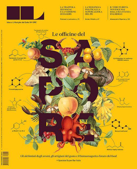 IL56_COVER | Flickr - Photo Sharing! | #design #editoraldesign #typography