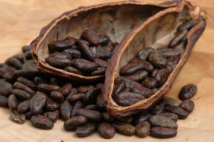 Raw Cacao - Raw Cacao beans contain possibly the world's most concentrated…