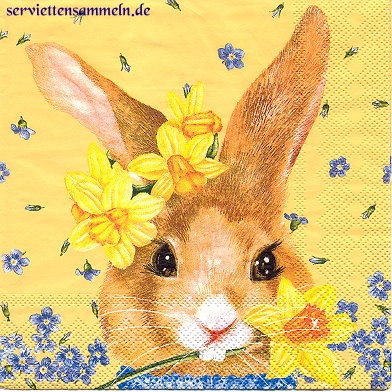Coelho - Guardanapo: Rabbit, Drawings, Rabbits, Bubbly Blue
