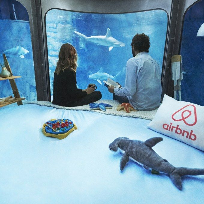Airbnb's Underwater Room in a Shark Tank