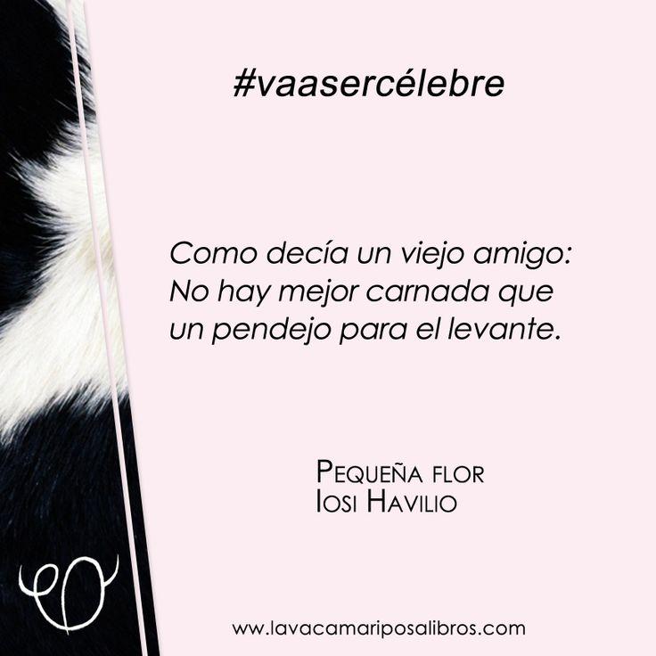 Una frase de Pequeña Flor, la novela de Iosi Havilio, que #vaasercélebre