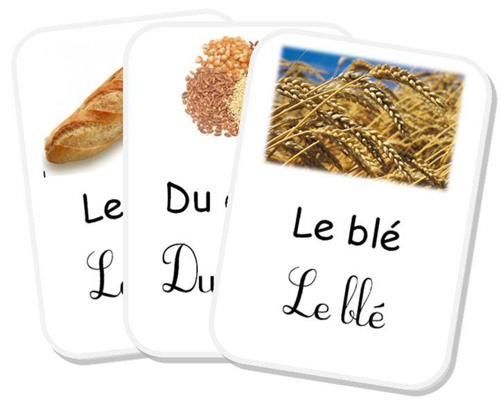 """*étude documentaire: """"du blé au pain"""""""